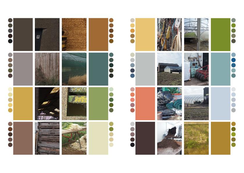 kleurenonderzoek29.jpg