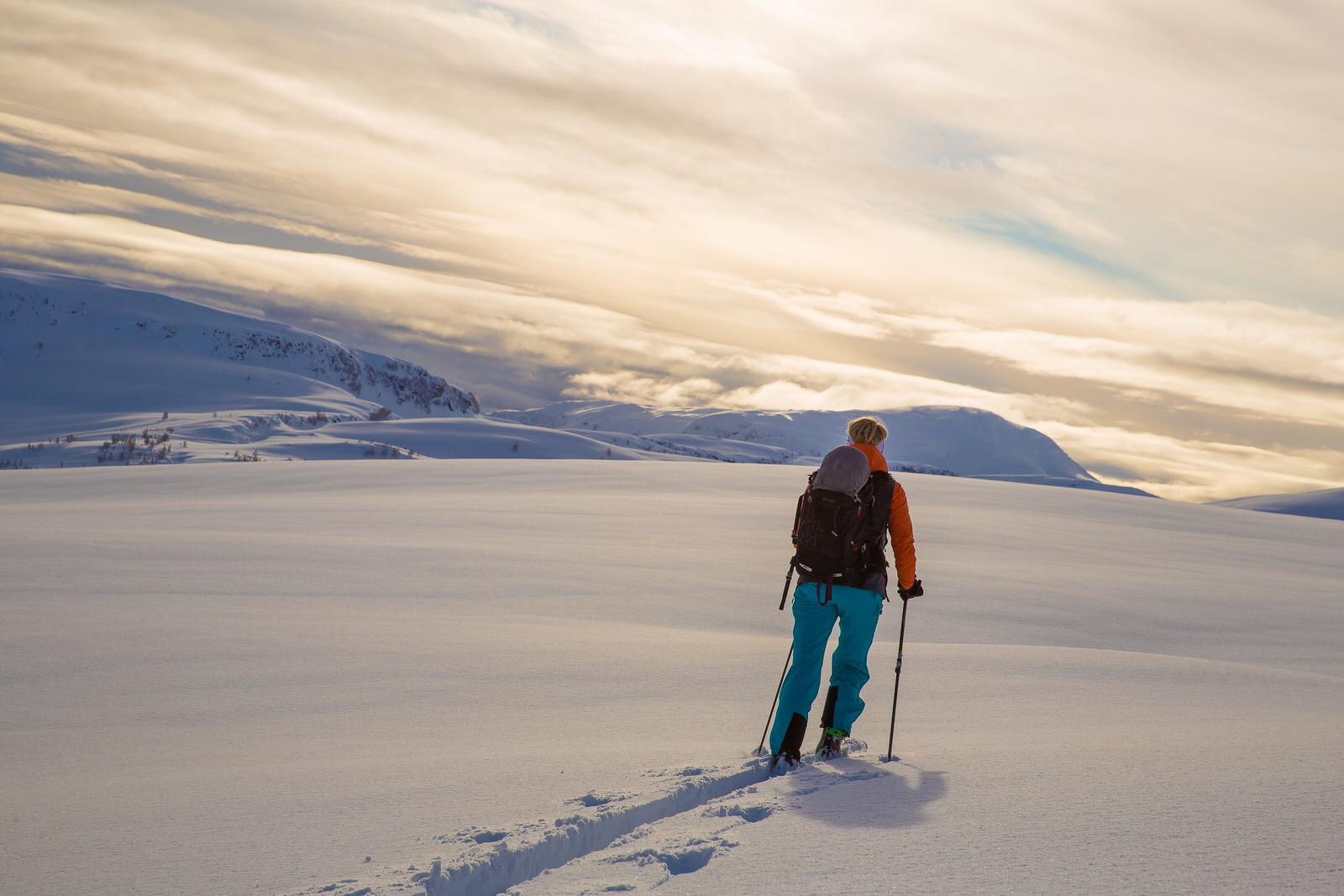 Sogndal - Sogndal har lett tilgang til fjord og fantastiske fjell sommar og vinter. Dette er staden for deg som vil ha ein køfri kvardag der du rekk det meste innan 10-15 minuttar. Sogndal er kåra til den 9. beste kommunen i landet i NHO sin kommune-rangering. Vi er også ein av dei kommunane som kan vise til tilflytting, spesielt av yngre, velutdanna personar. Gasta har moderne kontor på Campus Sogndal, der også ca. 50 andre bedrifter har tilhald…og så er det 10 minuttar med bil til snø og toppturar.Foto: Håvard Nesbø