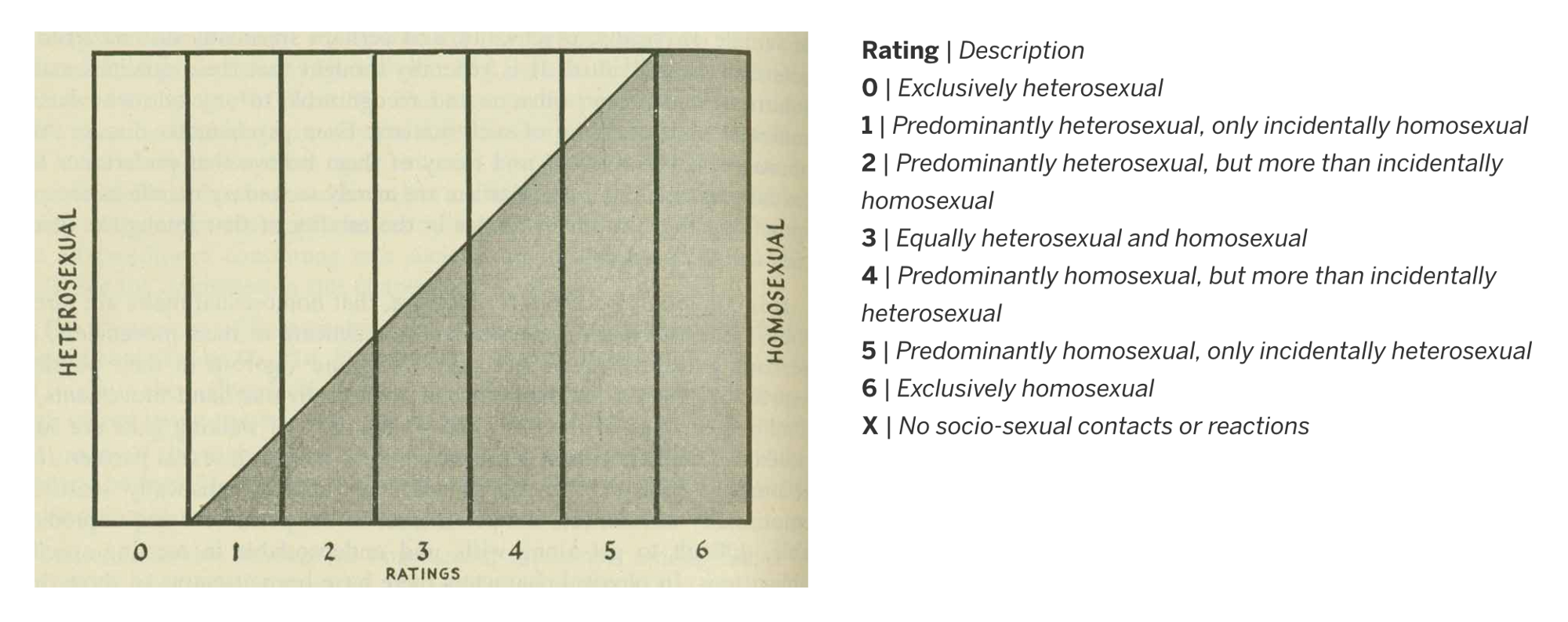 The Kinsey Scale