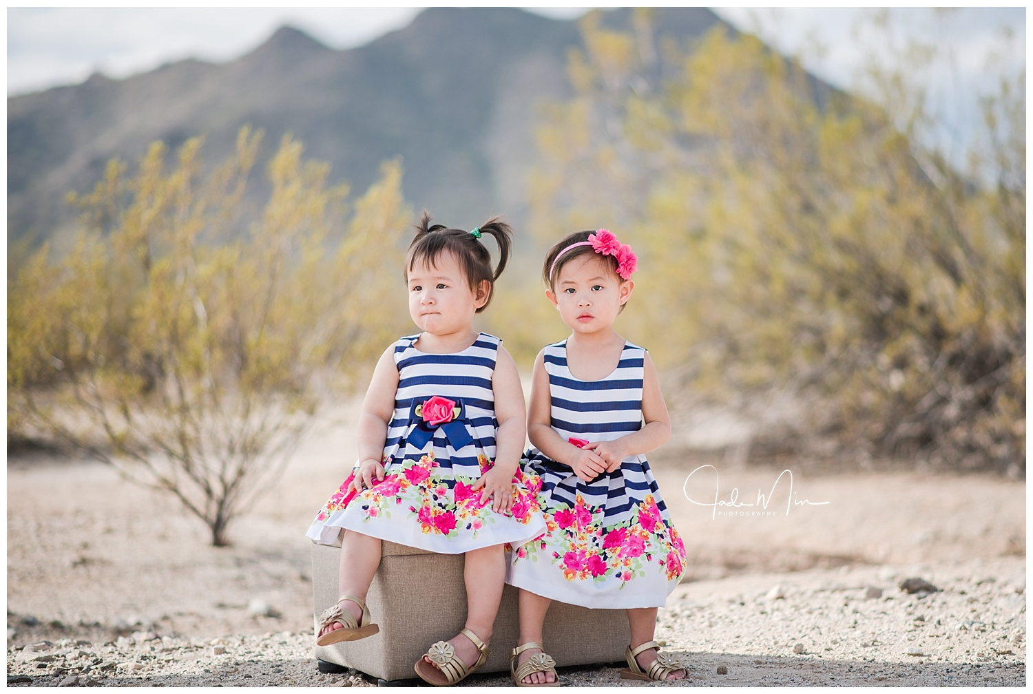 The little princesses, Jolina and Josephine. I LOVE their dress!