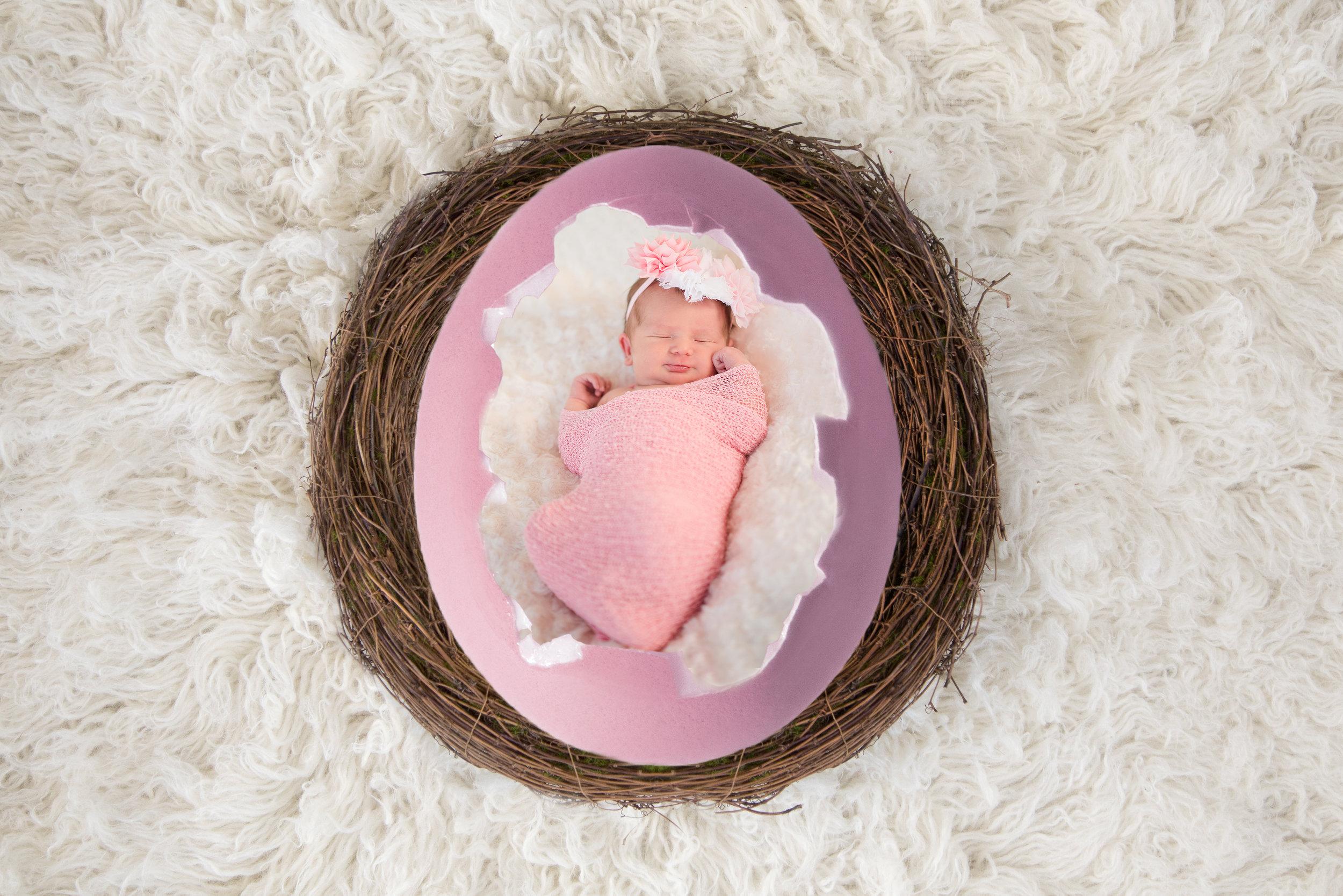 Florez Egg Nest.jpg