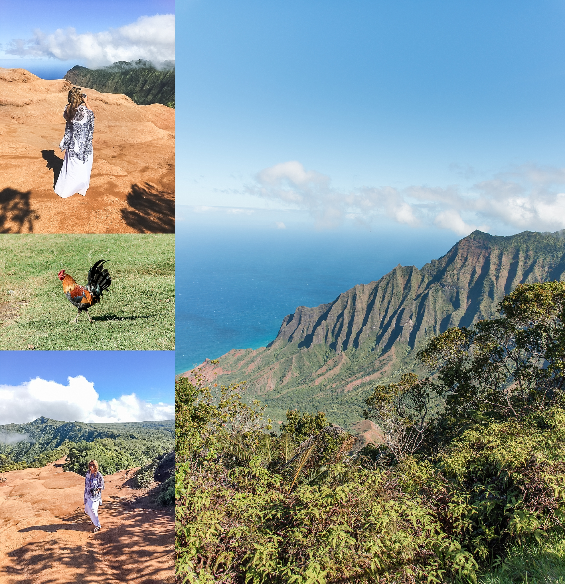 Gorgeous views...and roosters everywhere! -