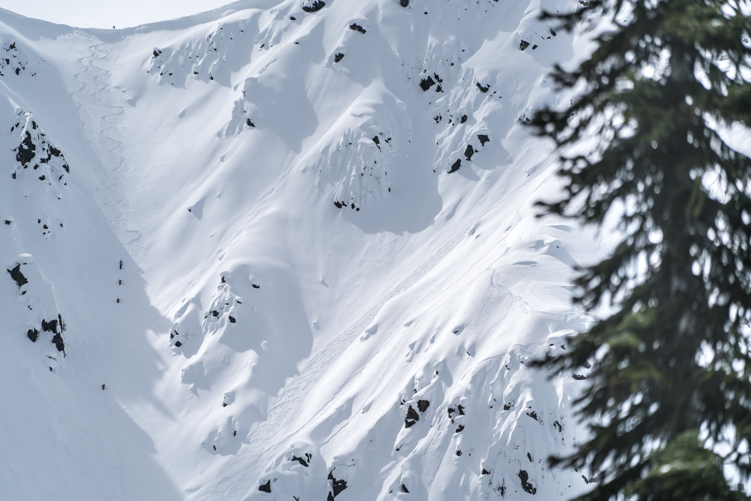 The crew climbing. photo: Shane Treat