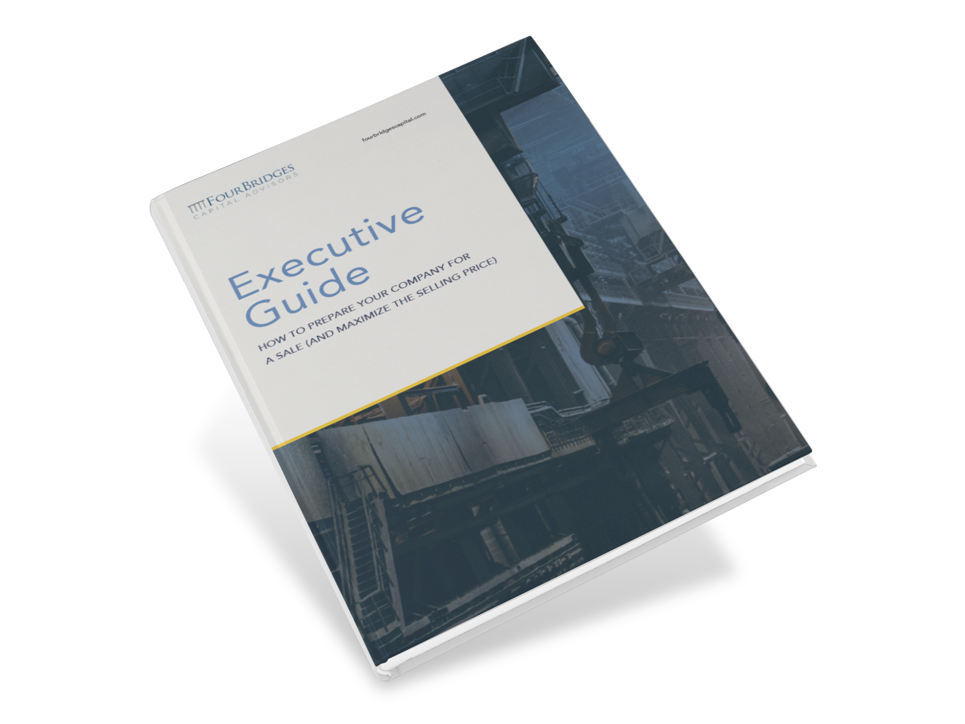 Executive Guide - Business Value