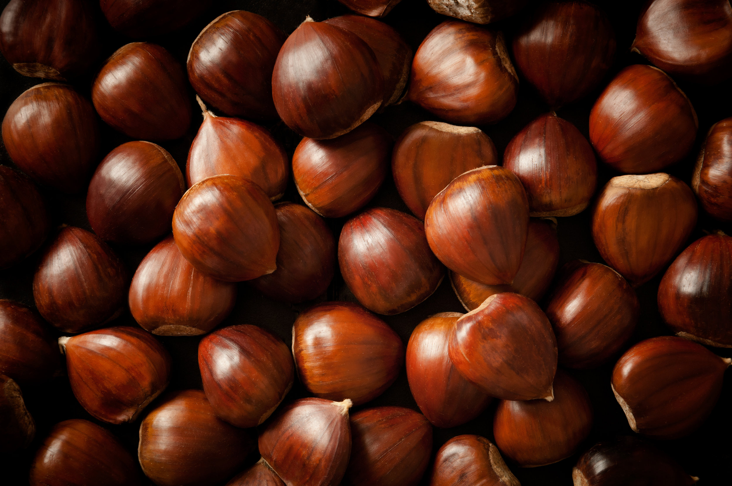 nuts_chestnuts (closeup)_242568343.jpg