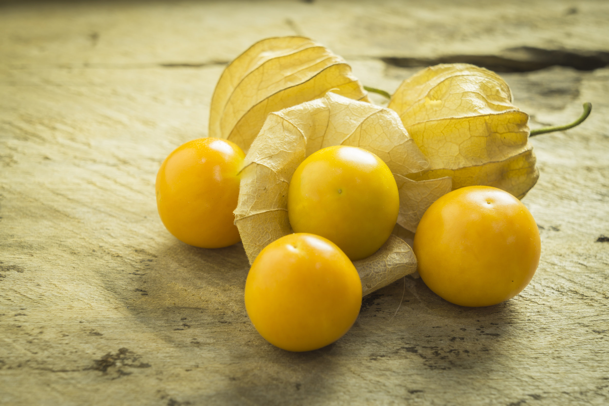 capegooseberries_378127492.jpg