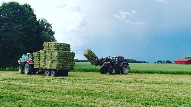 Vårbruket är i full gång och nu längtar vi efter sommar och höskörd🌤🚜👨🏻🌾