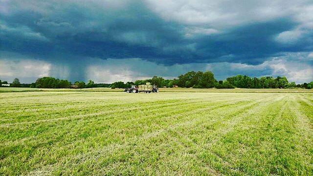 Även fast det är härligt med denna sommarvärme så vill vi gärna ha regn på grödorna nu! Såhär kan det se ut när regnet bokstavligen hänger i luften🌧🌦⛈ #livetpålandet