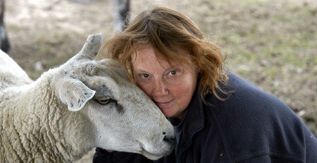 Marion with one of the many sheep at FRIEND