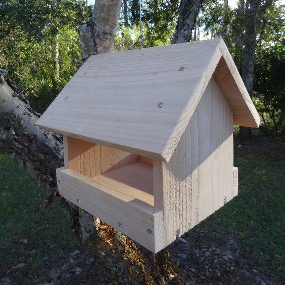 Bird Feeder Reference.jpg