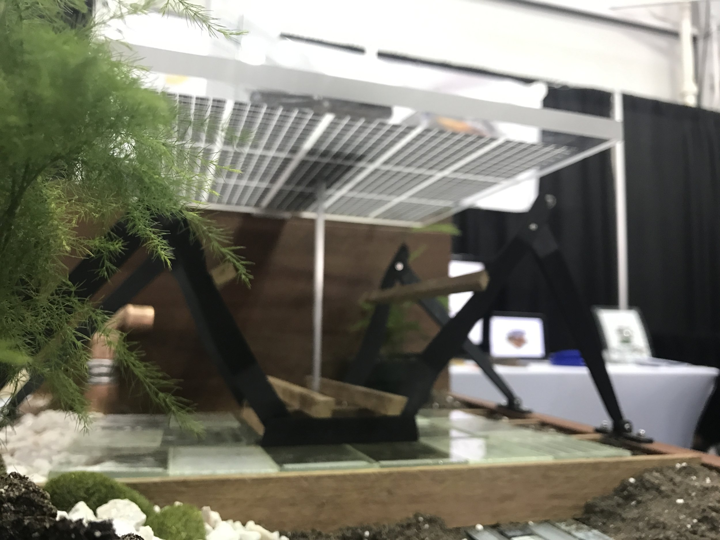 inhabit SOLAR model canopy