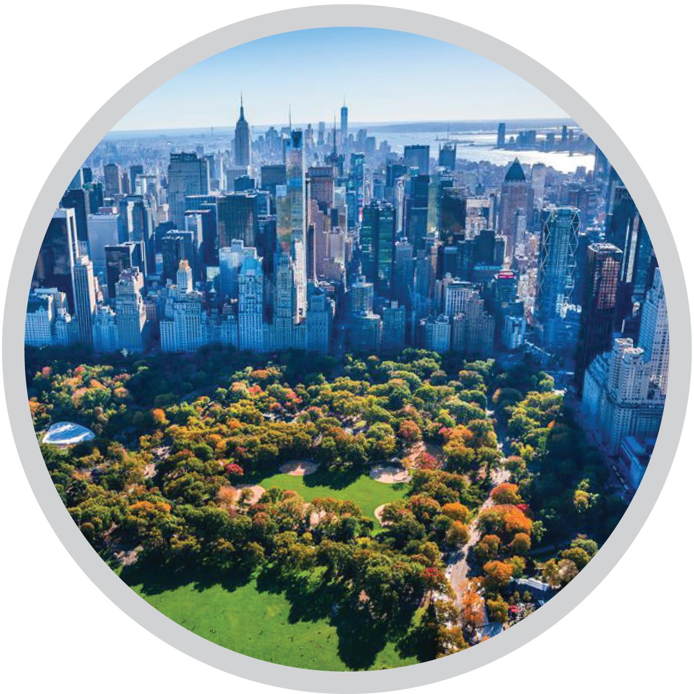 city icons-10.jpg