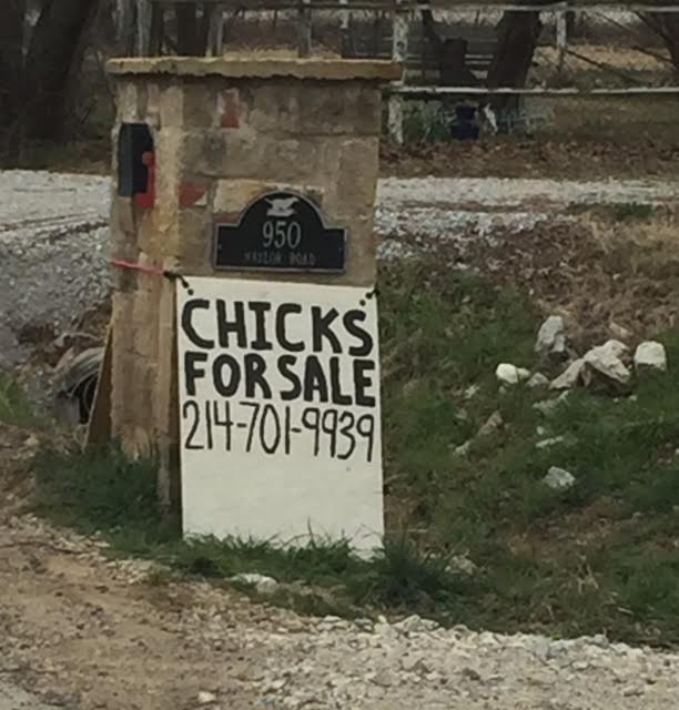 """This sign is right outside our neighborhood, across the street at the entrance to the cutest farm. I sent this picture to David while he was working... he replied """"Please Don't"""". LOL!!!"""