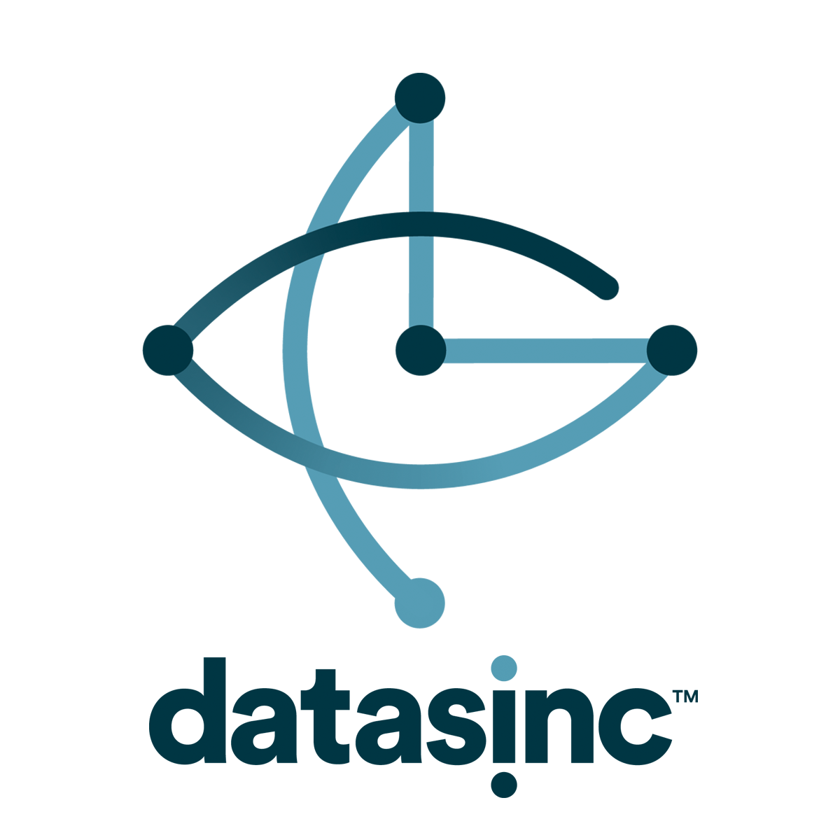 DATASINC - Our visualization and analytics platform helps you understand what your data means and tracks performance.