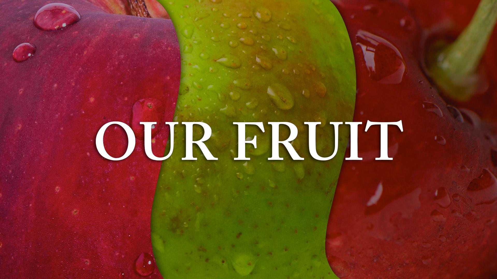 our-fruit.jpg
