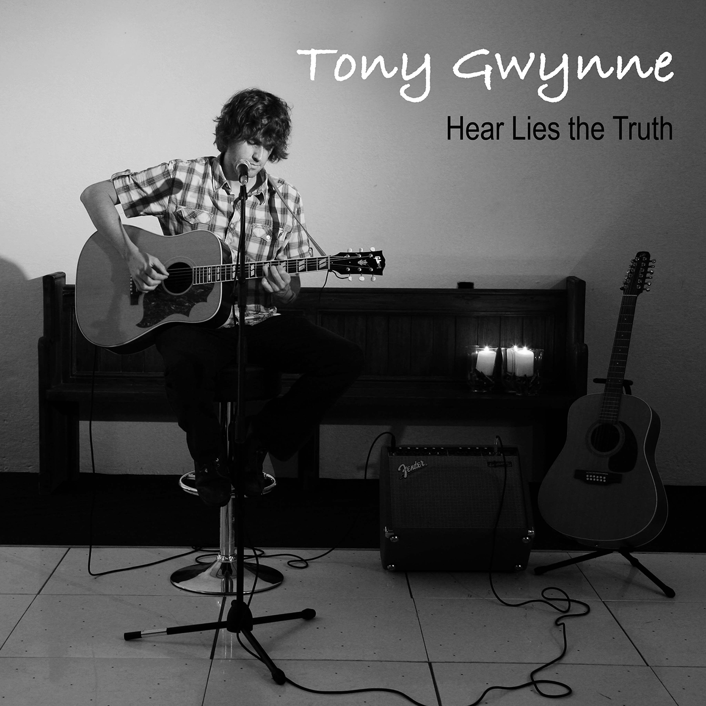 Artist:  Tony Gwynne   Title:  Hear Lies the Truth   Credit:  Performer, Additional Engineering   Year:  2011