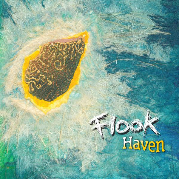 Artist:  Flook   Title:  Haven   Label:  Flatfish   Credit:  Additional Engineering   Year:  2005