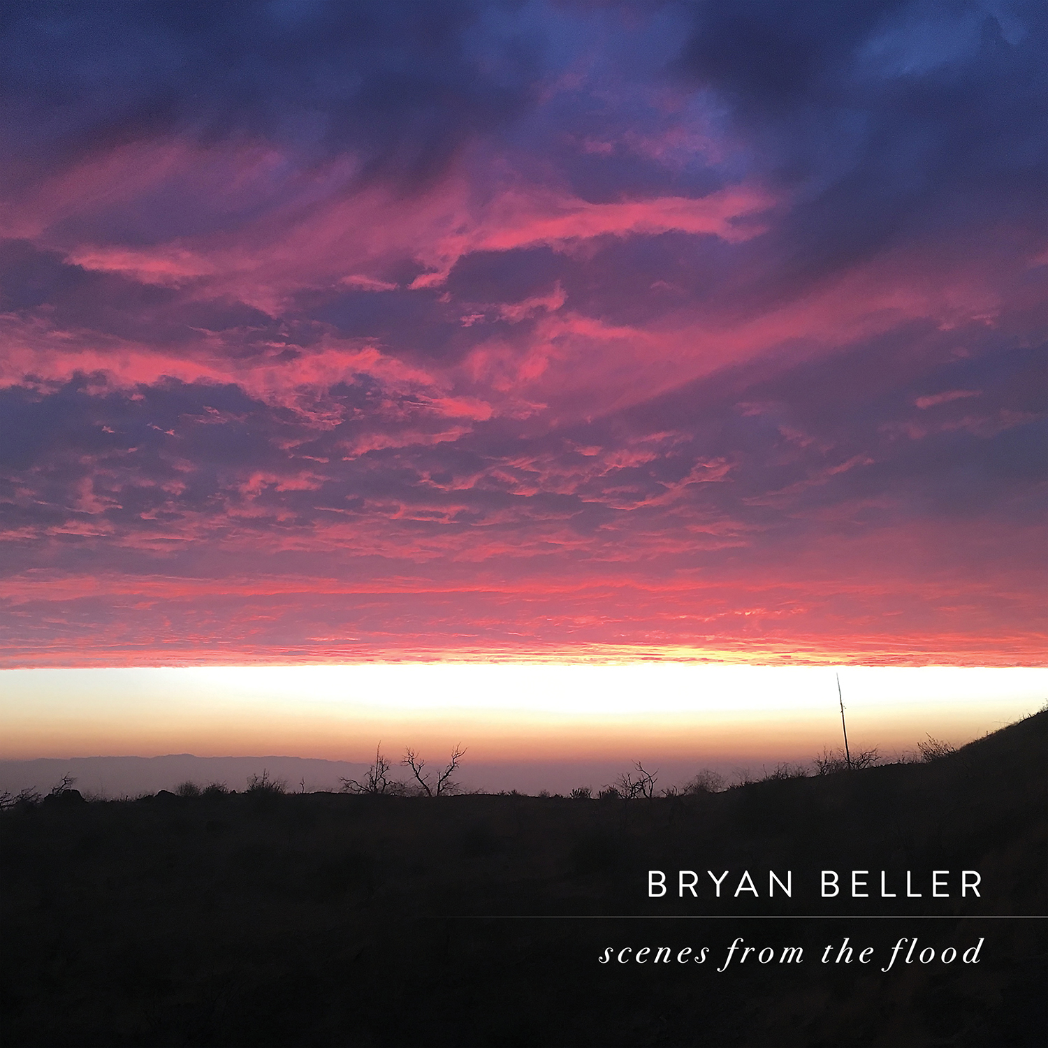 Artist:   Bryan Beller   Title:  Scenes From The Flood  Label:  Onion Boy  Credit:  Additional recording (Mike Dawes)  Year:  2018
