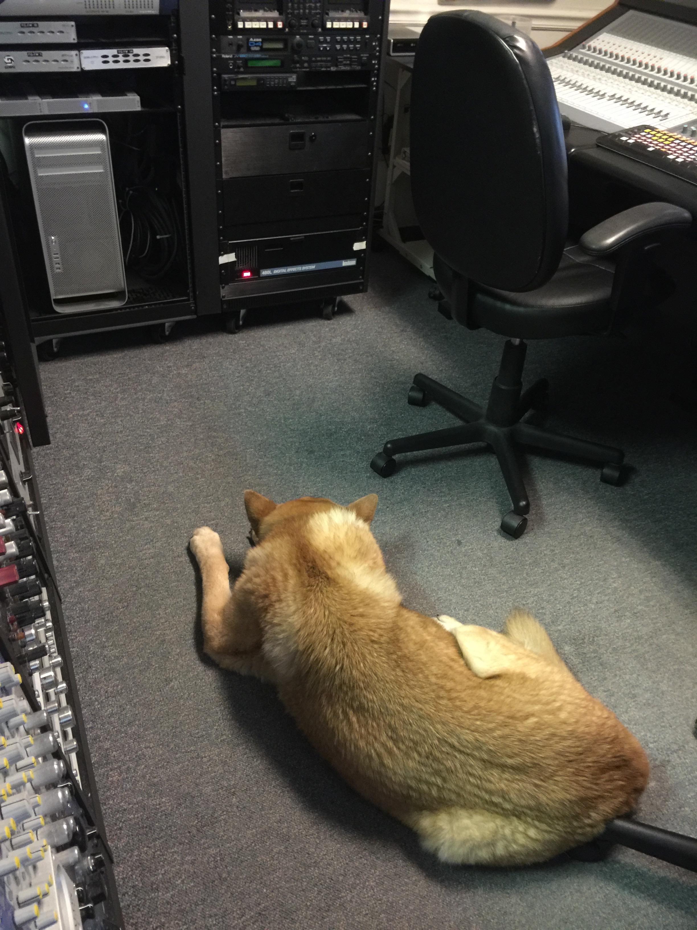 sadie control room.jpg