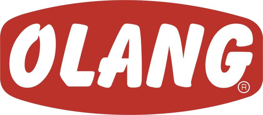 Résultats de recherche d'images pour «olang logo»