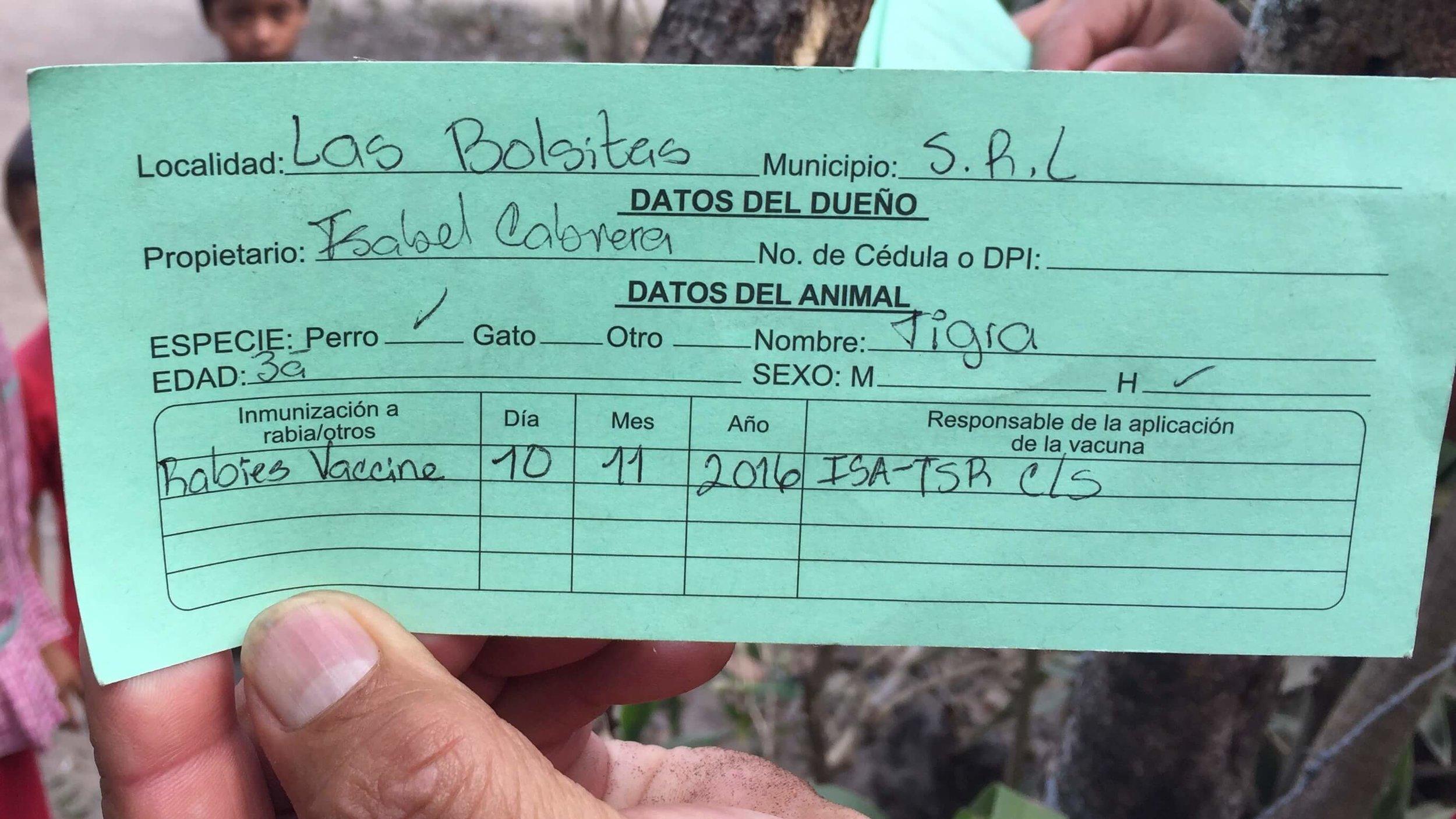 Tigra's Rabies Vaccination Certificate