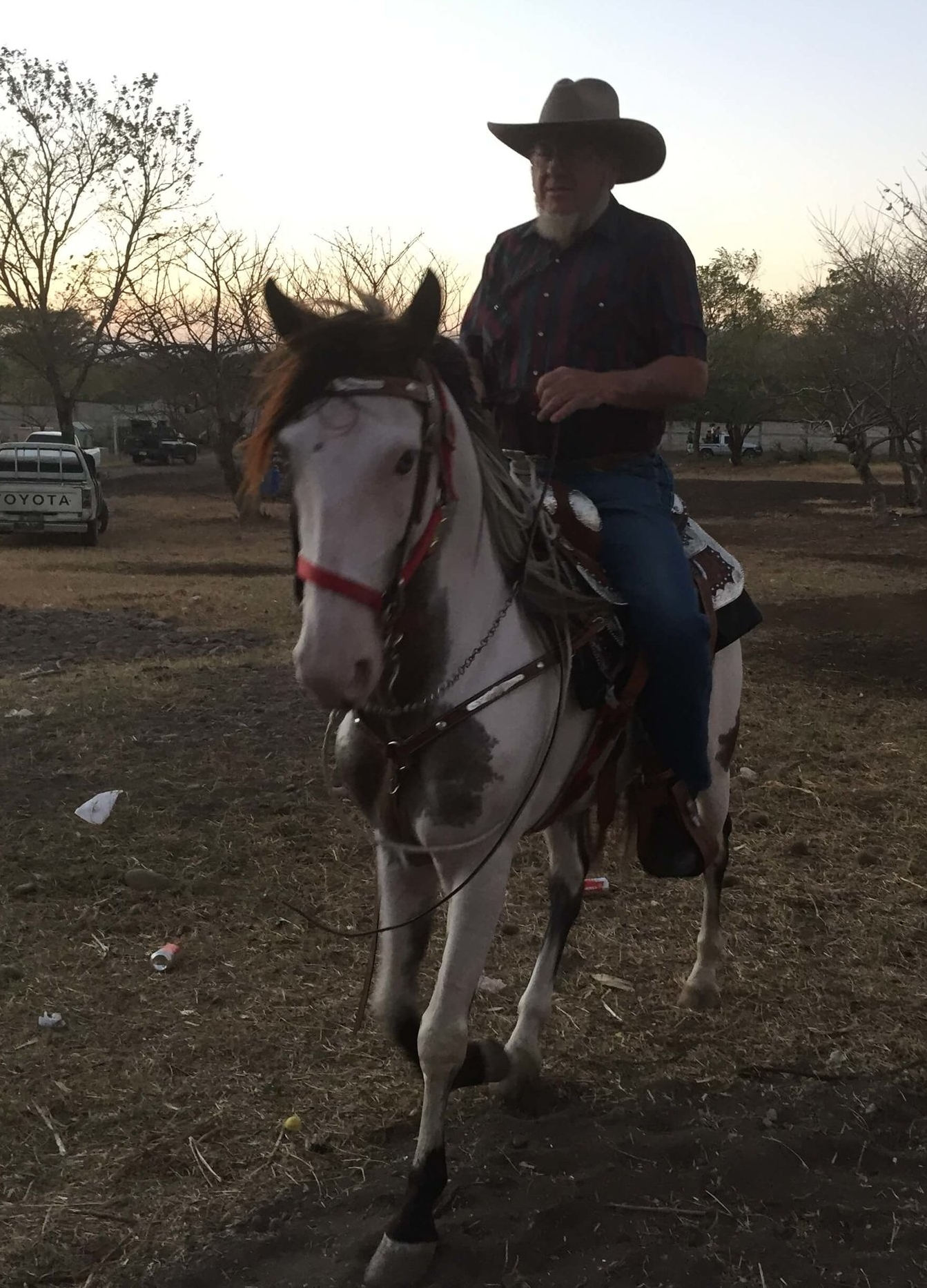 Horse trainer, Sam Anderson, takes one of the horses on a test drive.