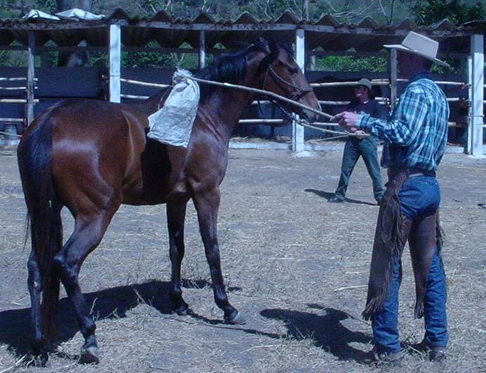 In 2006, at a ranch near Jalpatagua, Guatemala, horse trainer, Byron Garwood, worked with a troubled horse that had never been saddled before.