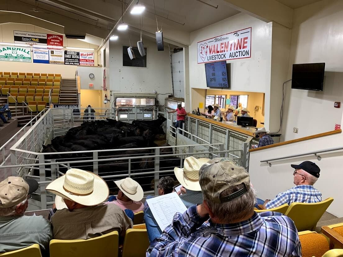 You can't go to Valentine without checking out the livestock auction at the sale barn! From time to time, Lawrence Turner and his friends have had cowboy church here.