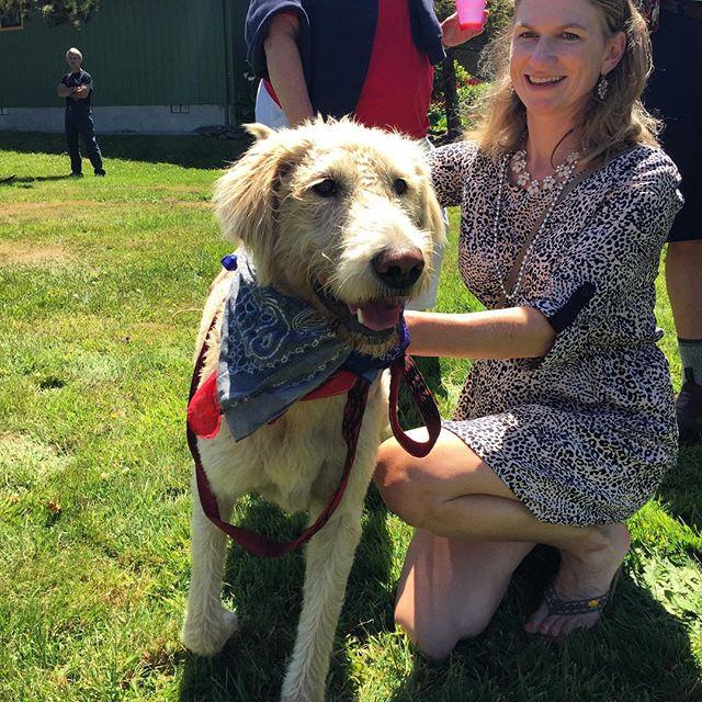 Competitor in our big dog division - Haley is ready to go! #pnw #pdx #pnwonderful #upperleftusa #oregoncoast #rockawaybeach #wienerdog #dachshunddaily #dachshundpics #doxiestuff #weinerdogs #doxiholics #doxieobsessed #dachshundsunlimited #ilovemydog  #dachshundrescue #dachshunddaily #dachshundpics #sausagedogcentral  #dachshundsofinstagram #wienerdog #pet #doxies #weenies #wienerdograces #instacute #doxieig #sausagedogcentral #whoruntheworldWEENS #firecrackernationals #barkbox #tillamook #tillamookcounty
