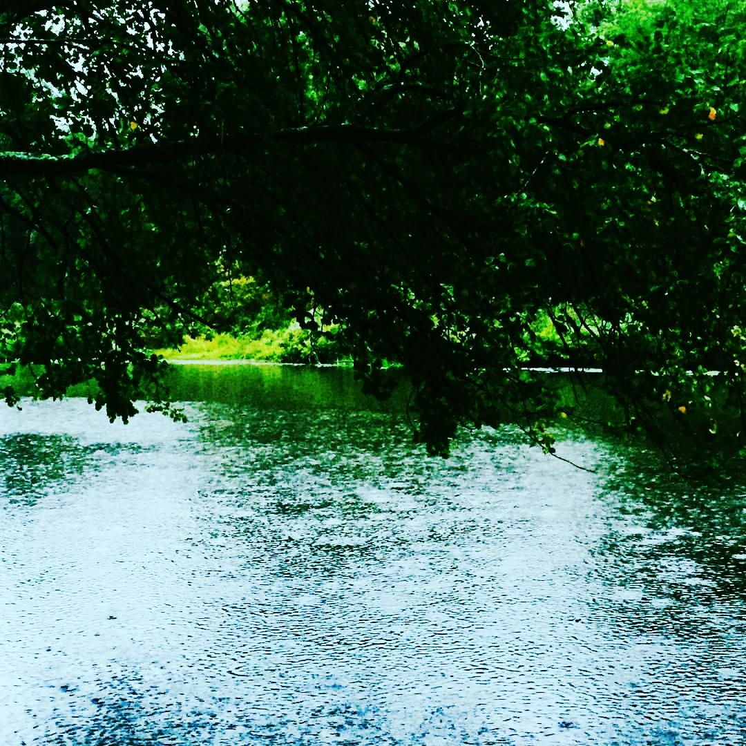 Rain on the Charles