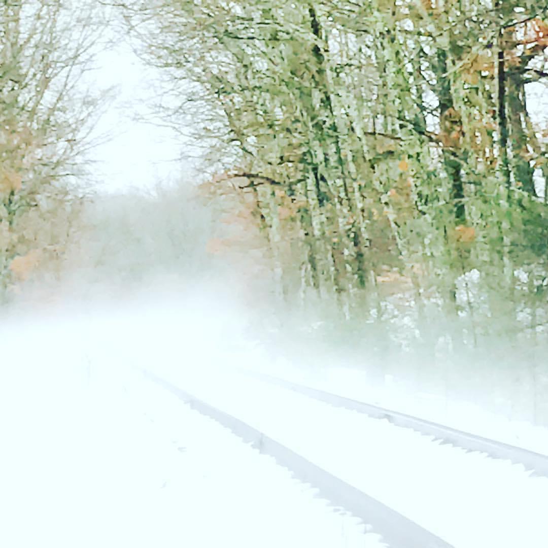 Snowy Tracks in Morning Fog