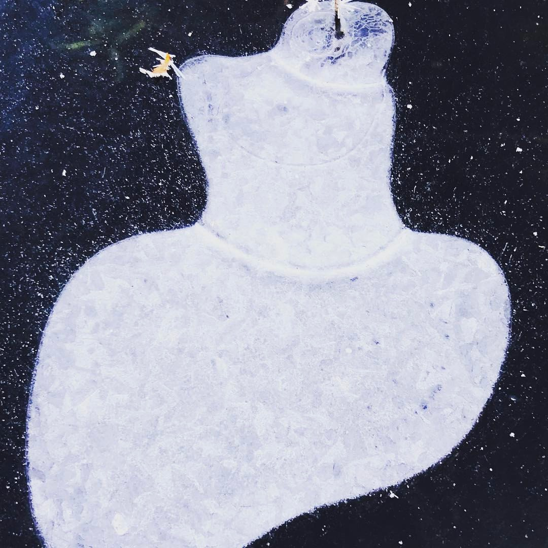 Lady's Dress, Image in Ice, Charles River