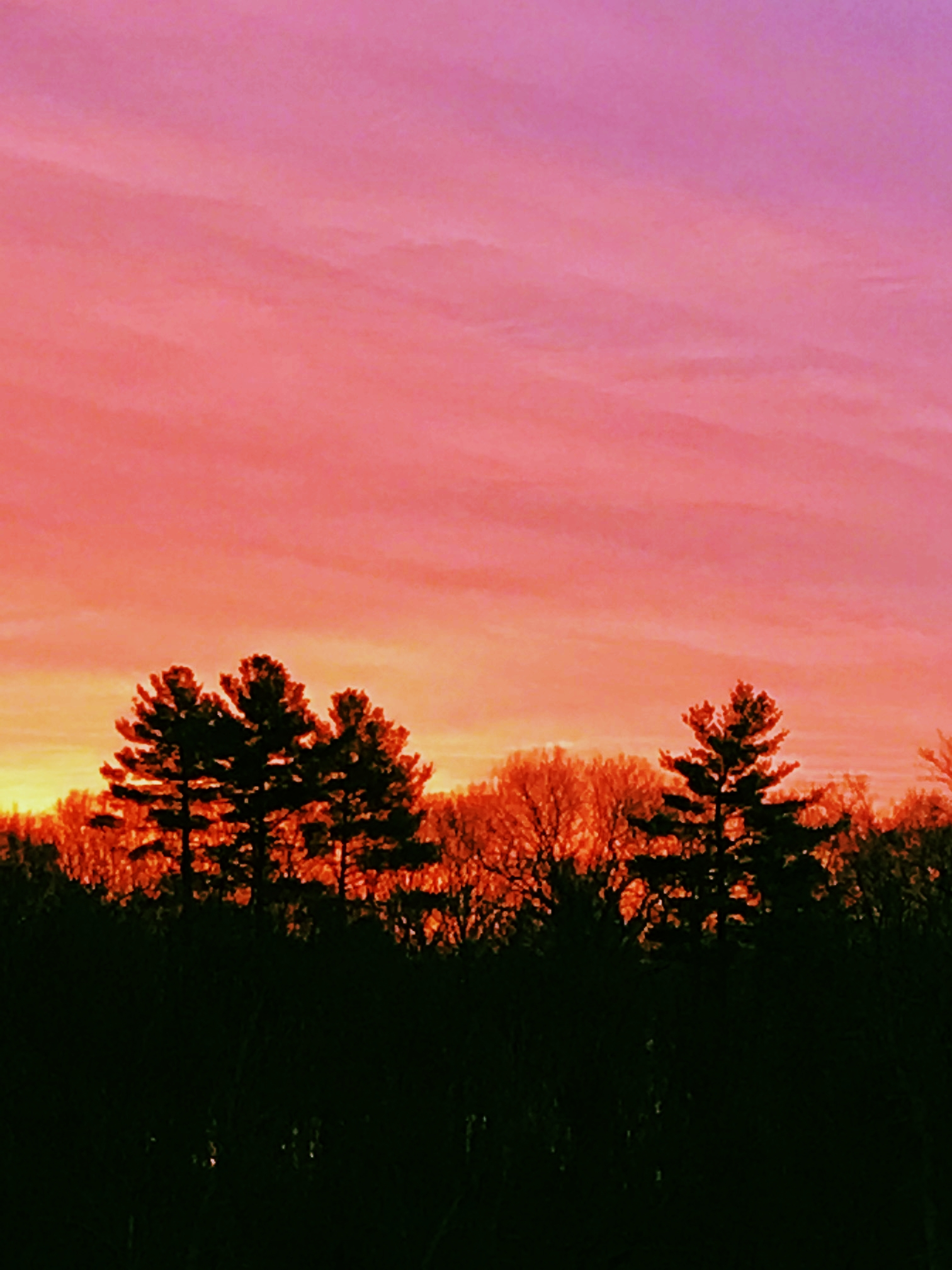 Red Dawn, Charles River Woods
