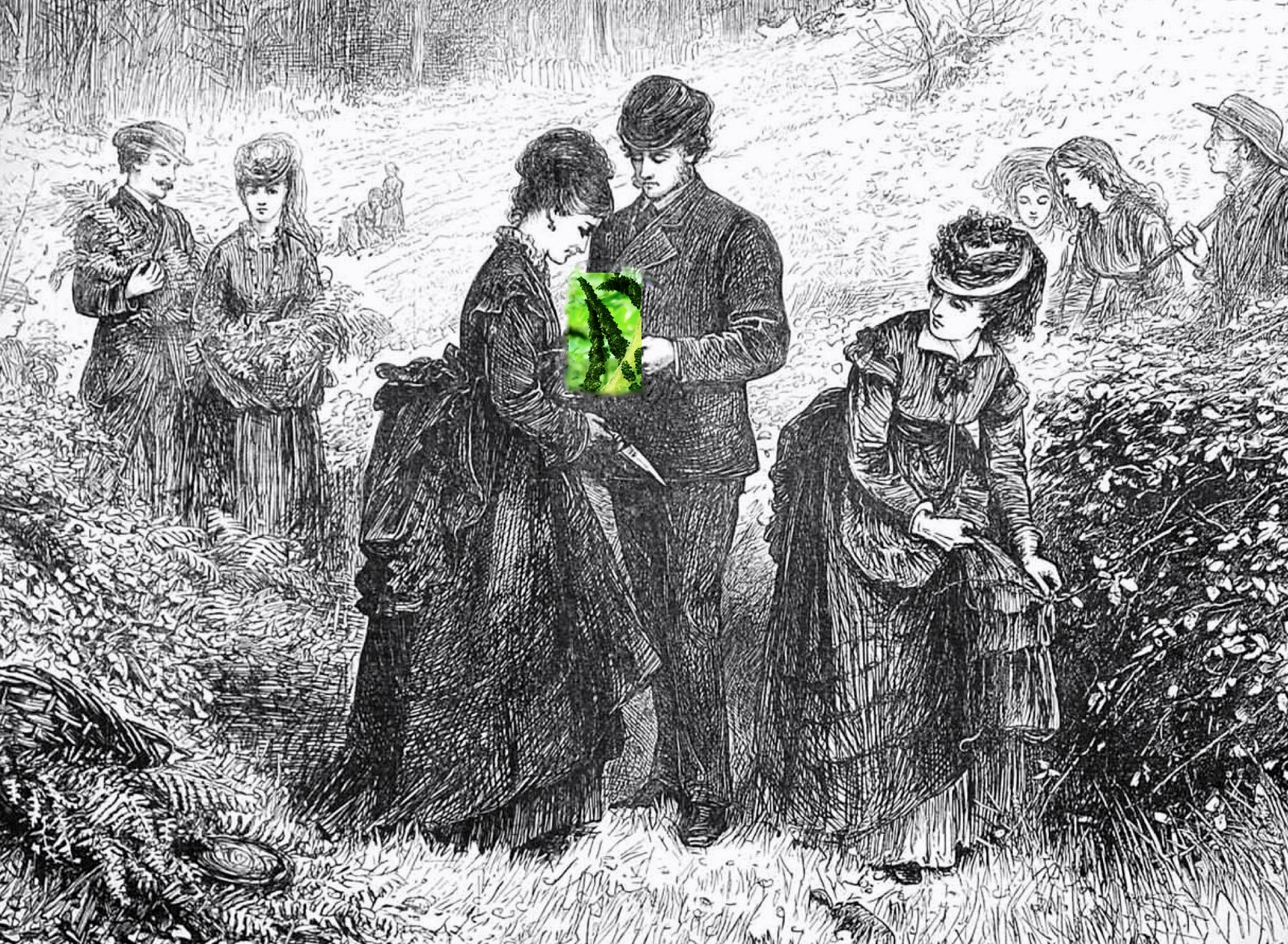 """Gathering Ferns"" ( Helen Allingham ) from   The Illustrated London News  , July 1871. (Alteration by Kelly DuMar)"