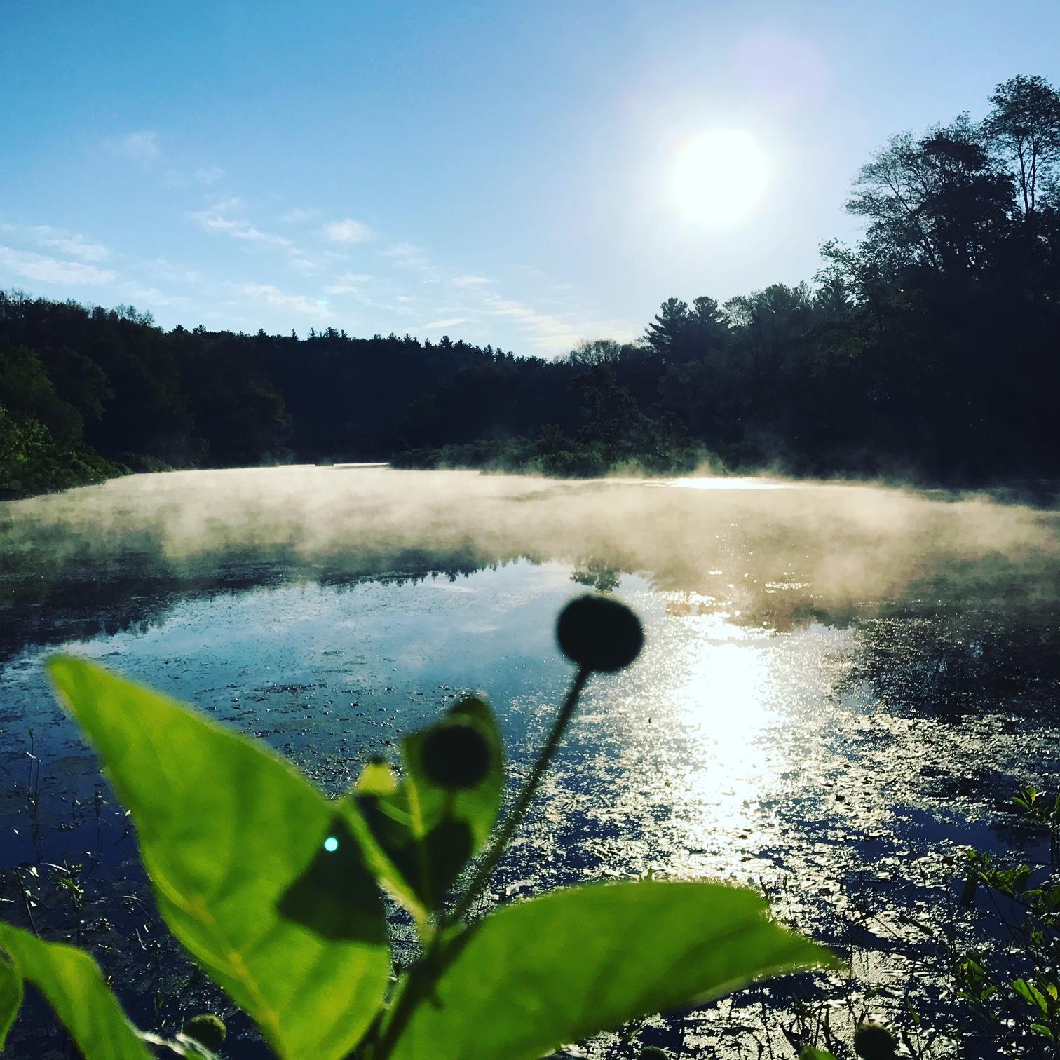 river mist.JPG