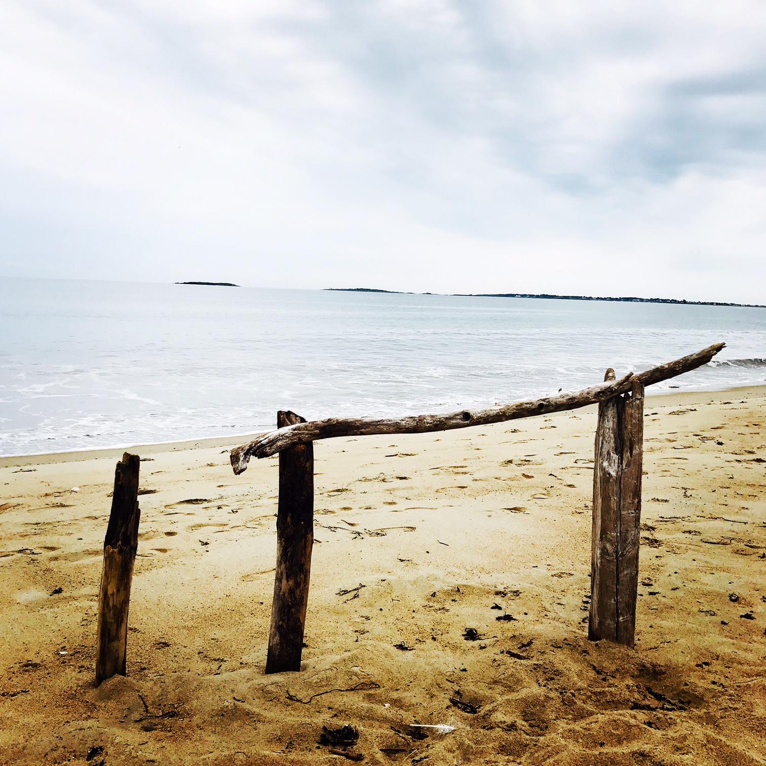 Driftwood, Ferry Beach, Saco, Maine