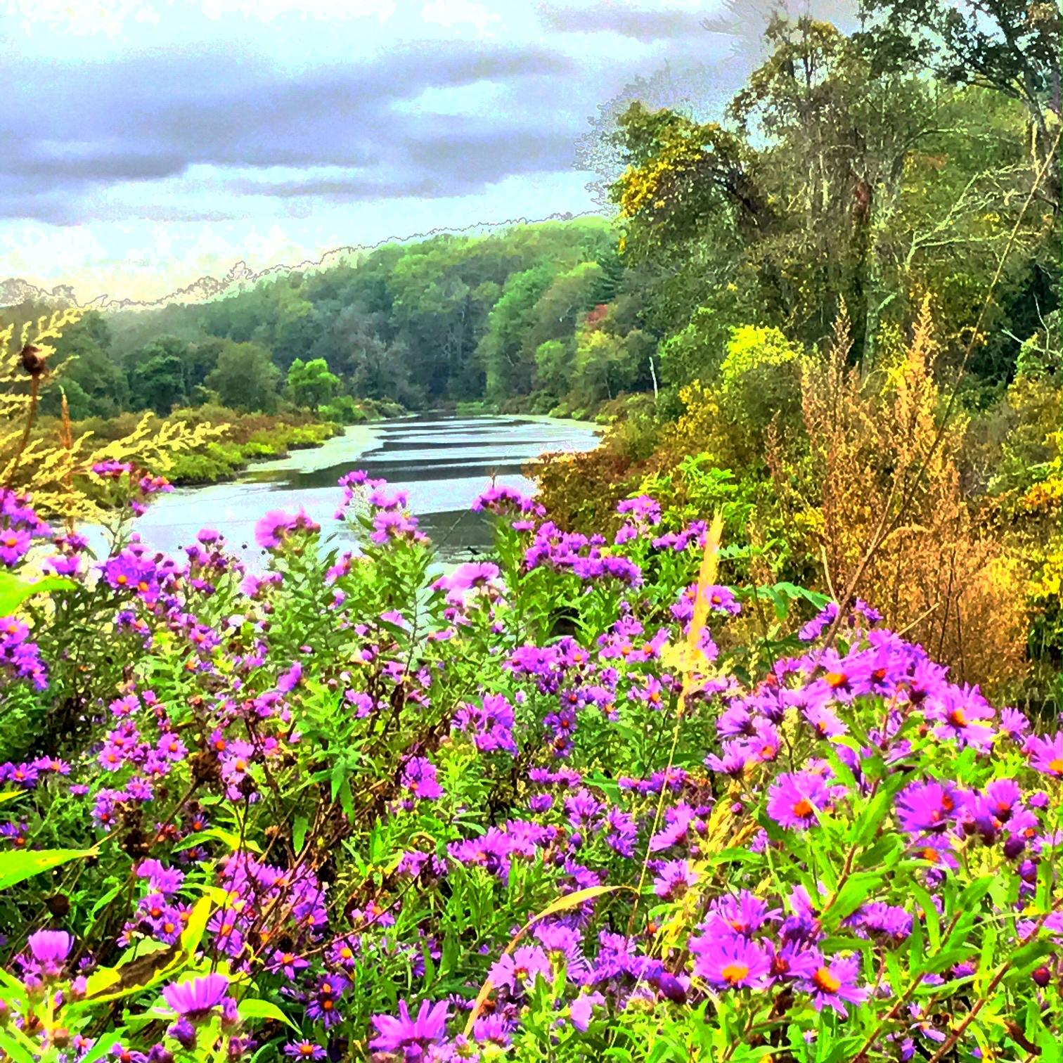 Charles River, September morning