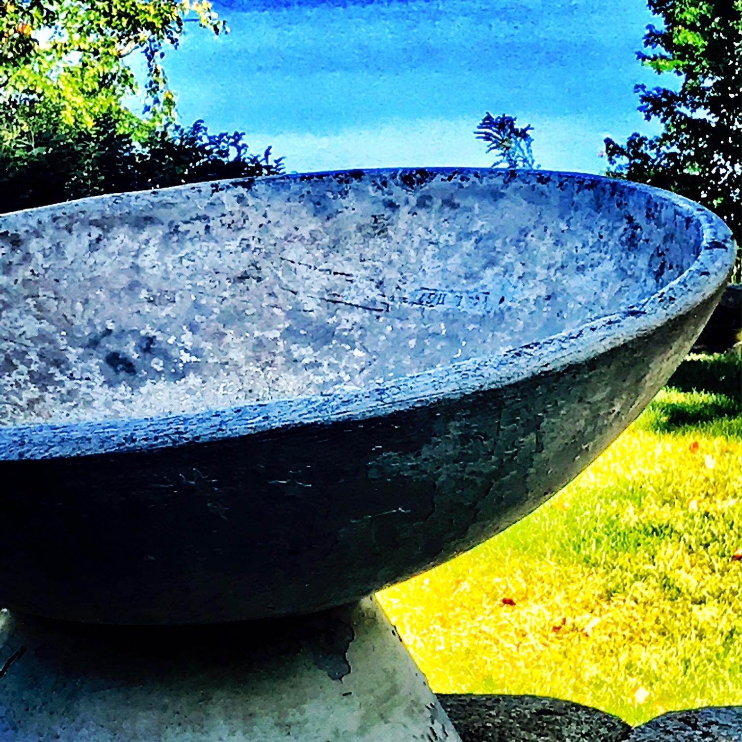 Liz's Blue Bowl, Farm Pond View