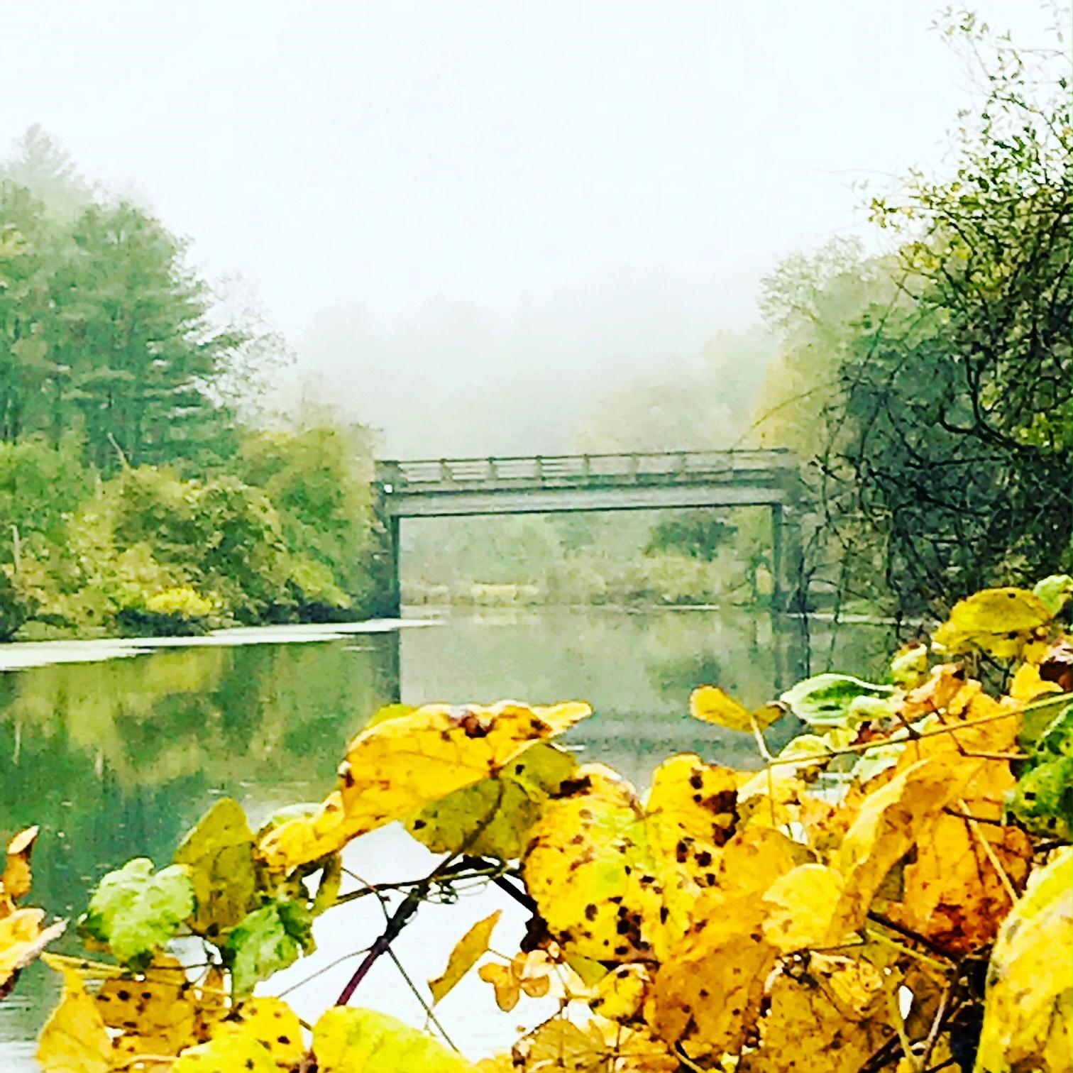 death bridge october.JPG