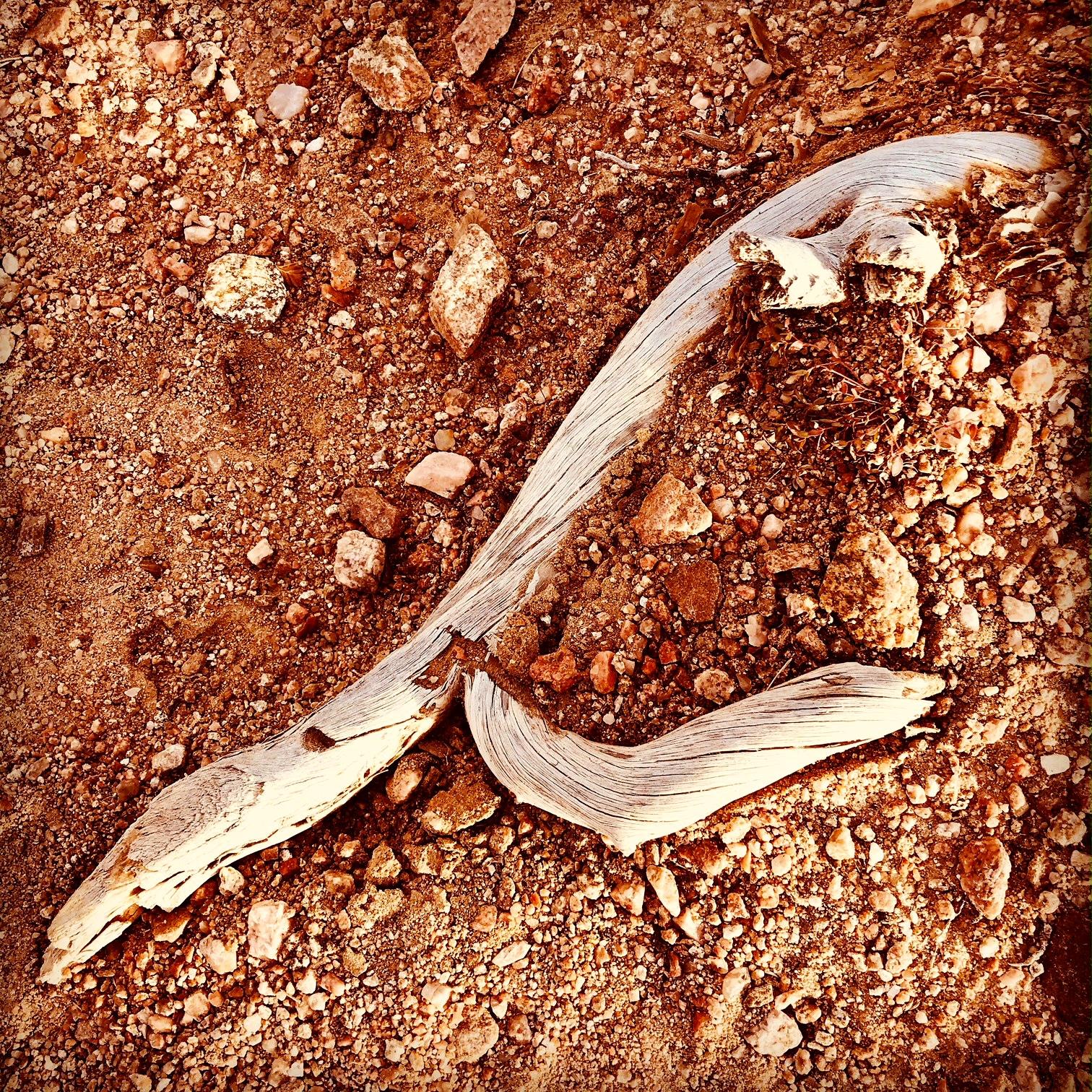 stick on ground.JPG