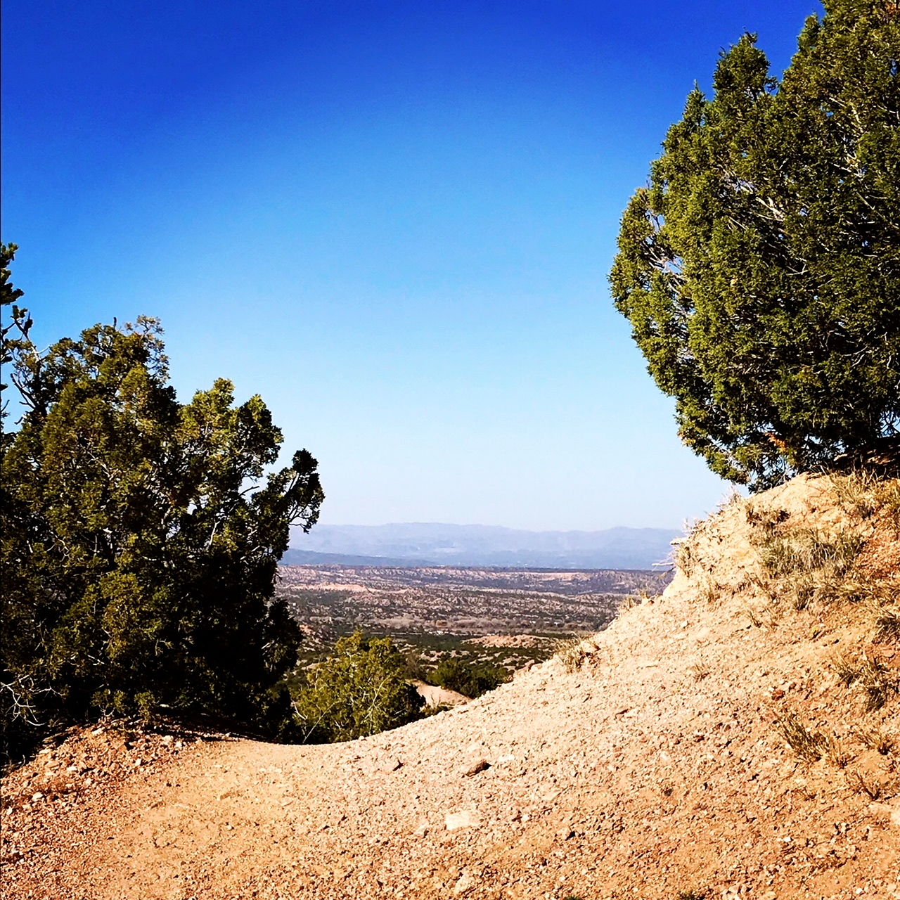 trail 2.JPG
