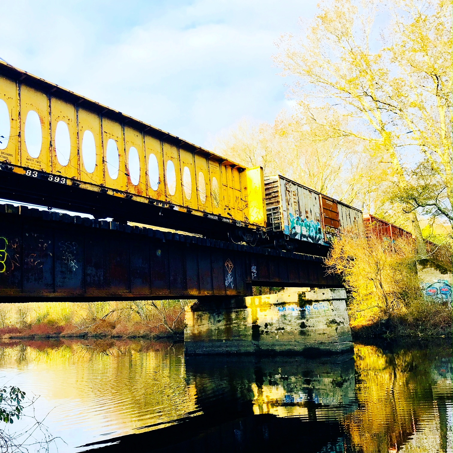 Morning train over trestle bridge, Charles River