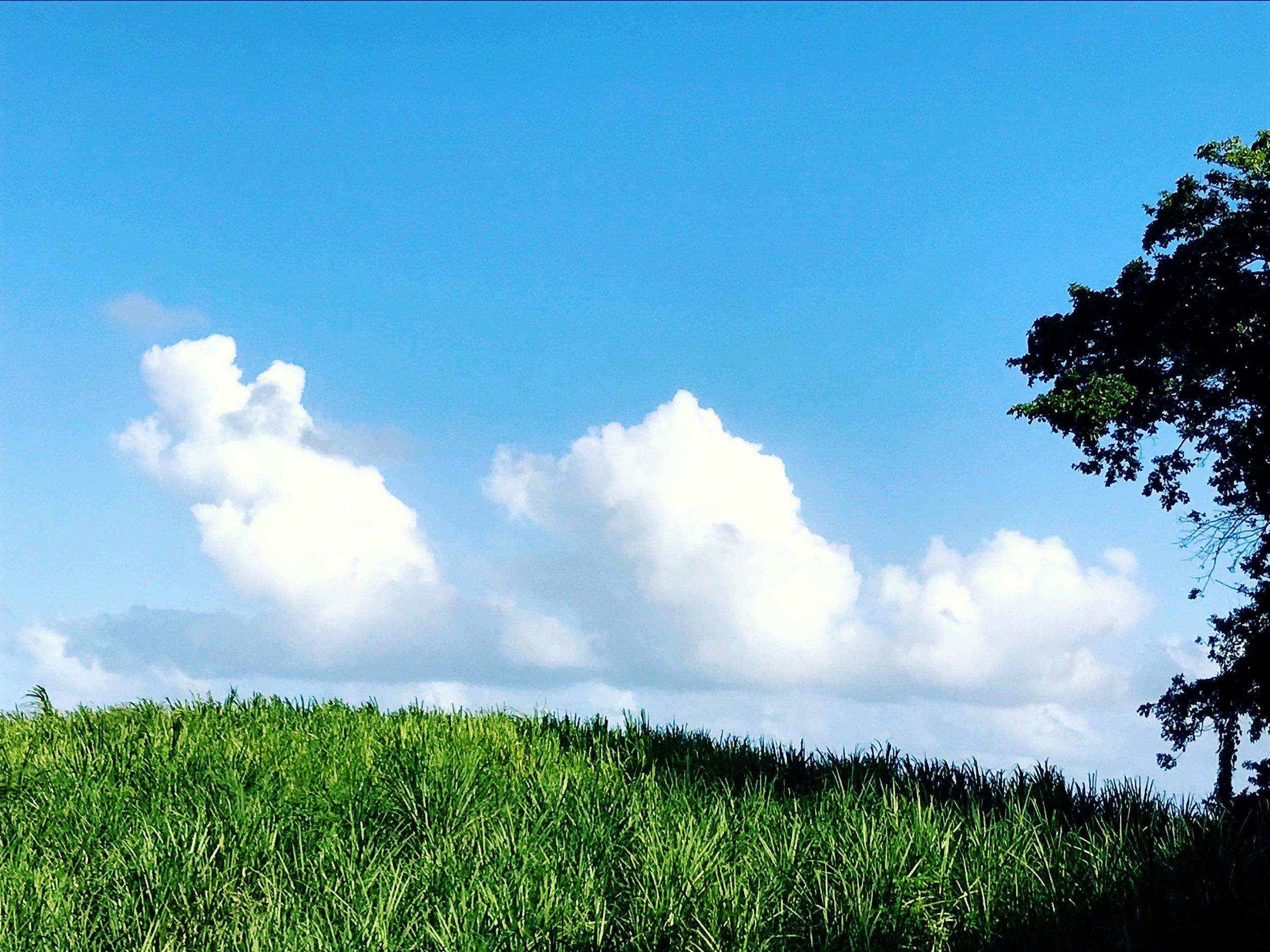 three clouds.JPG