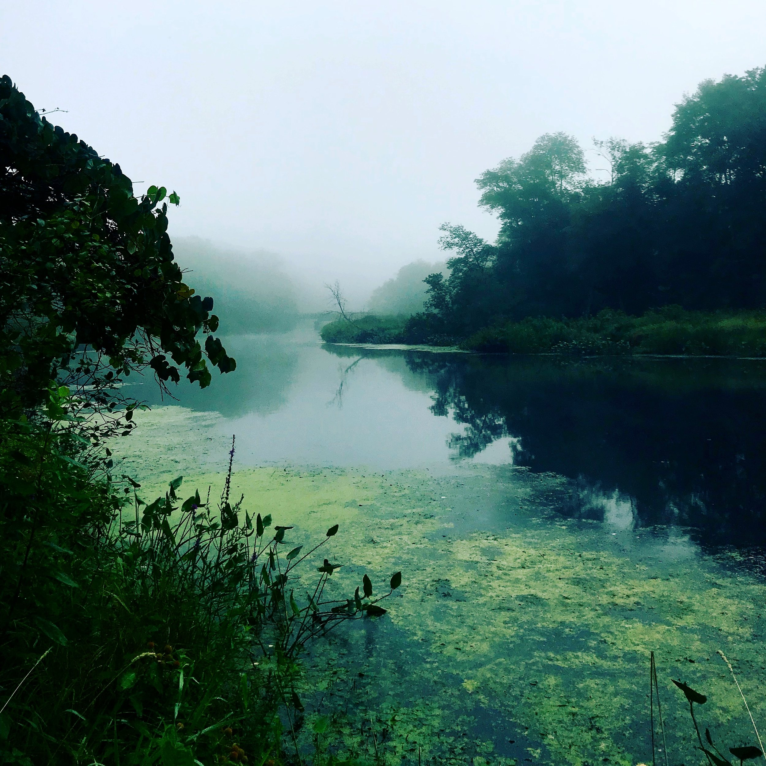 Dreamy Charles River Morning View