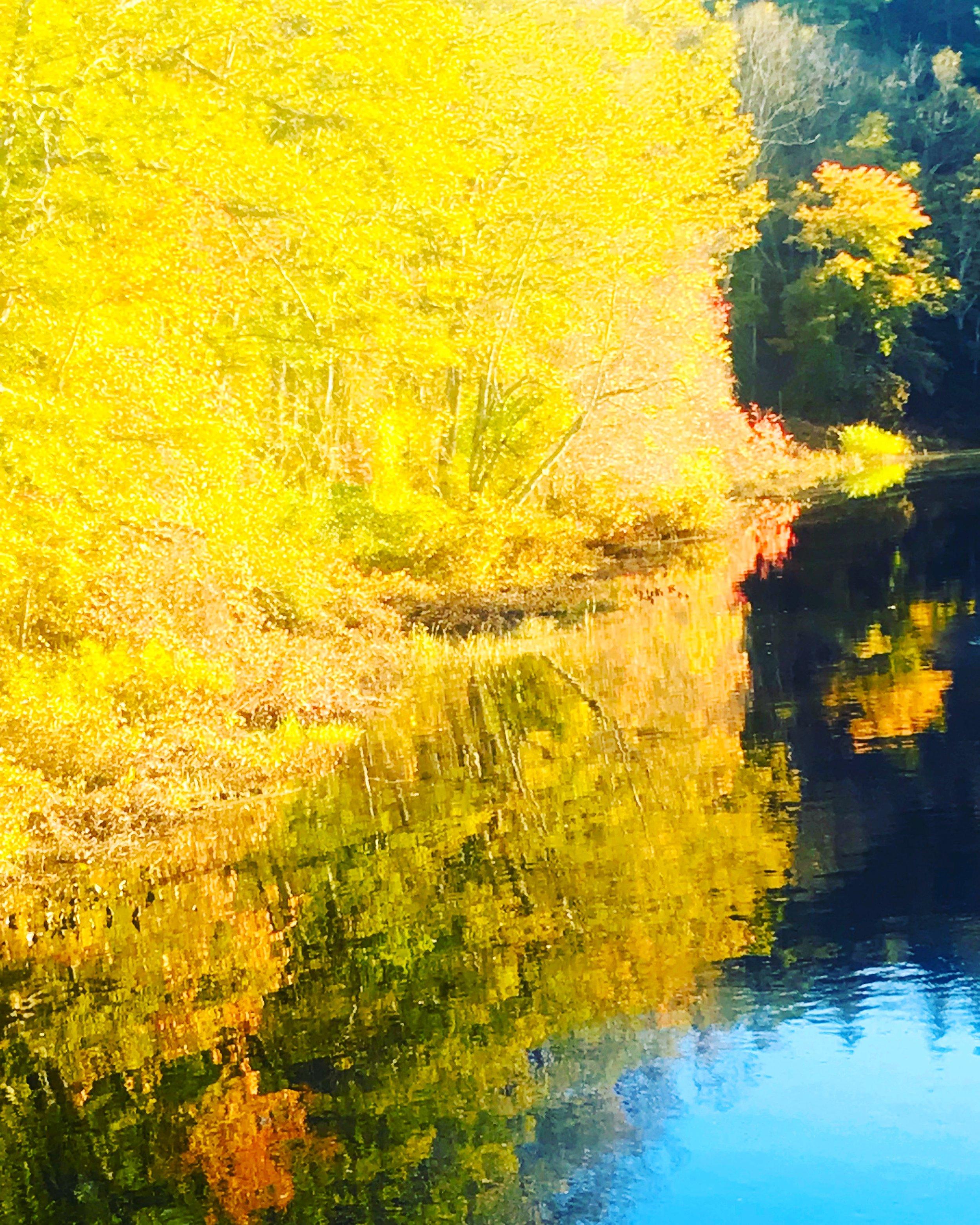 Charles River Morning