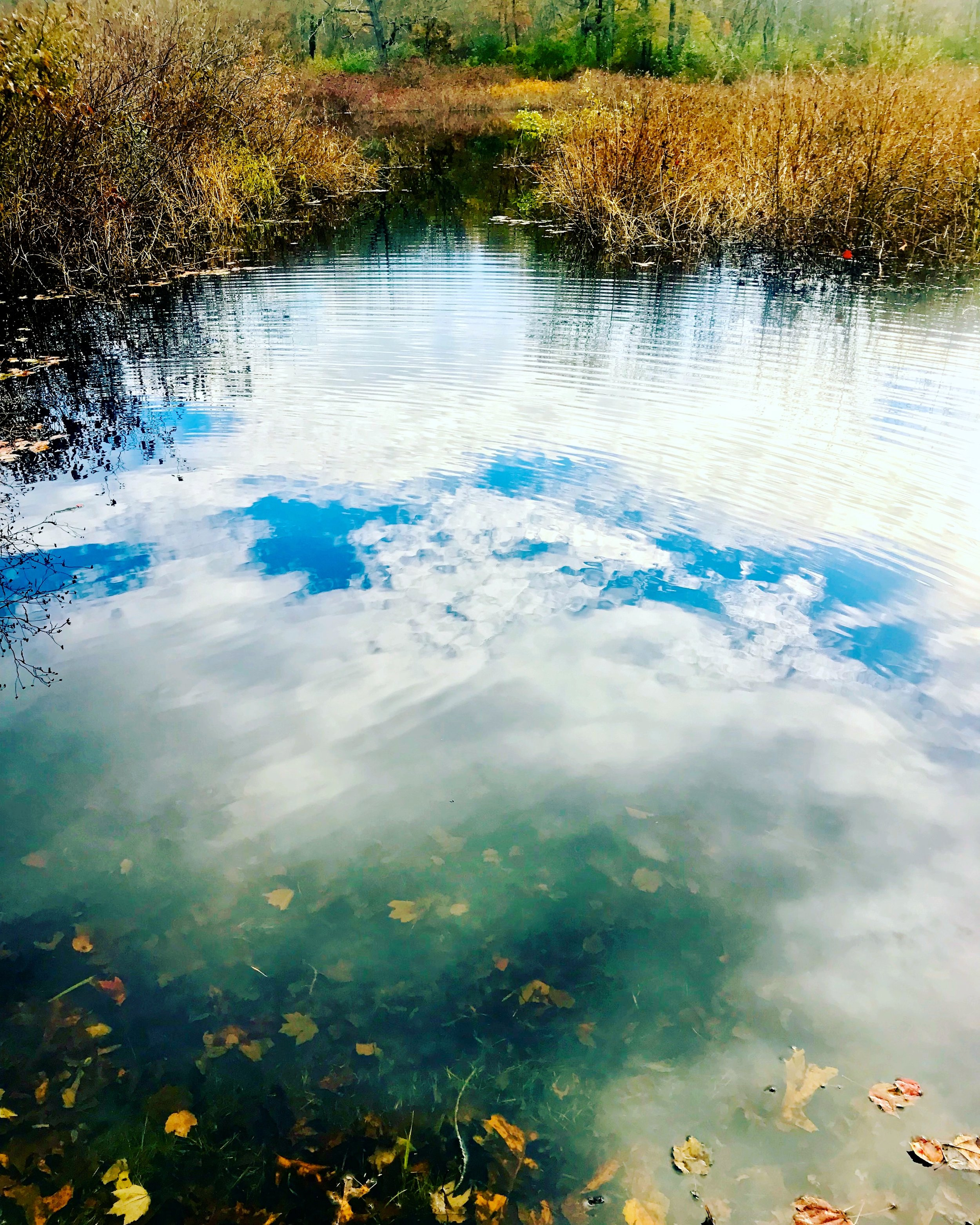 river blue.JPG