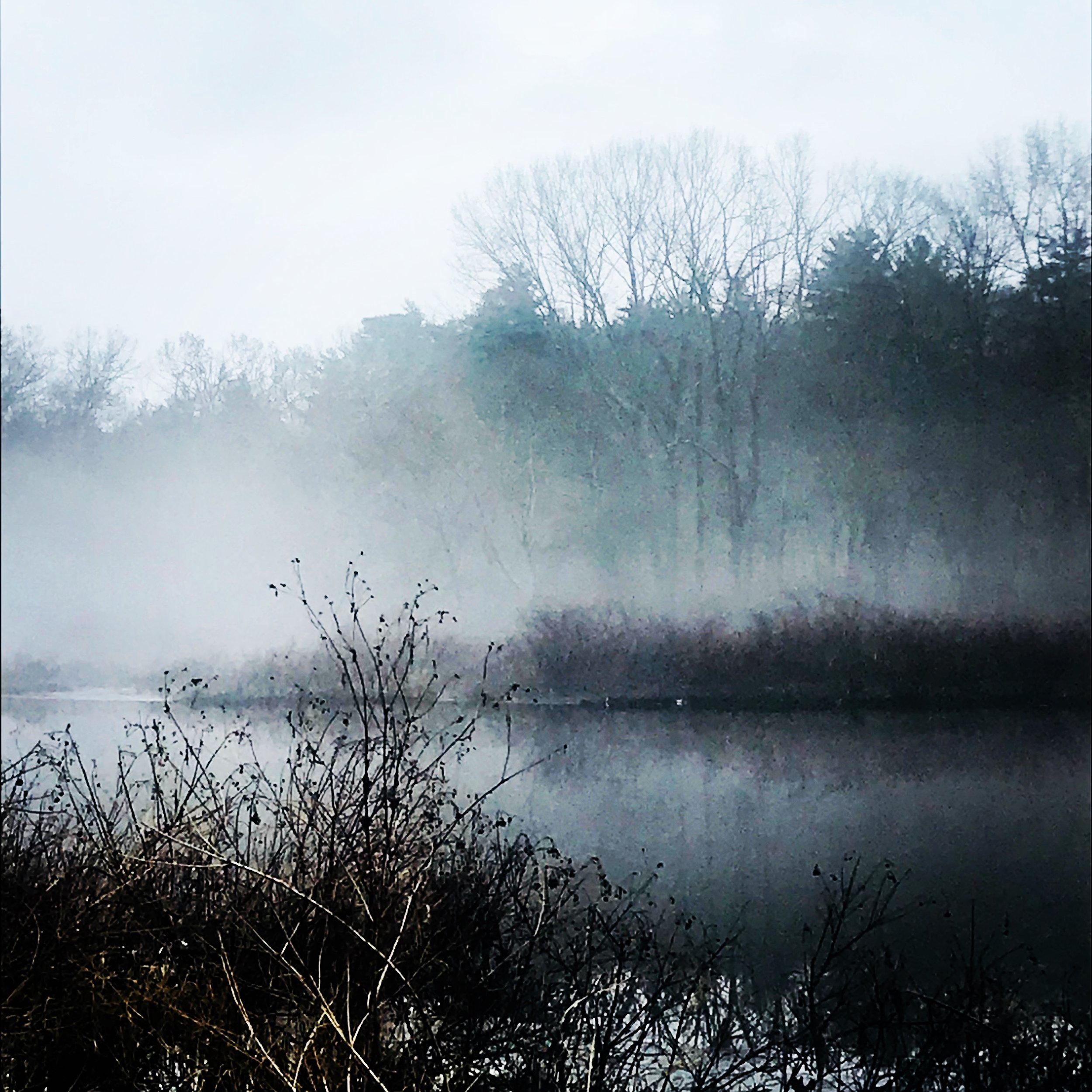 Foggy morning Charles