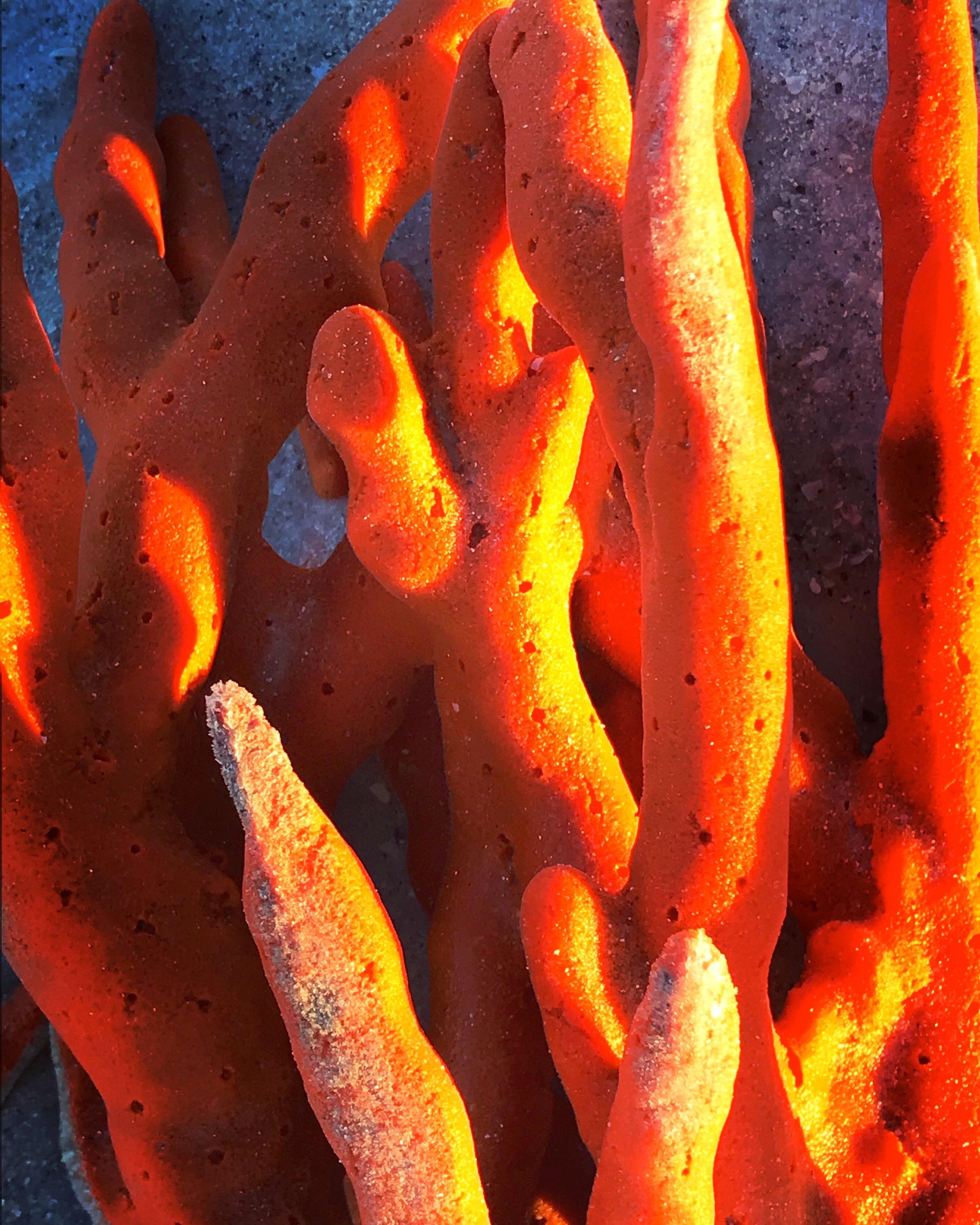 Finger Sponge
