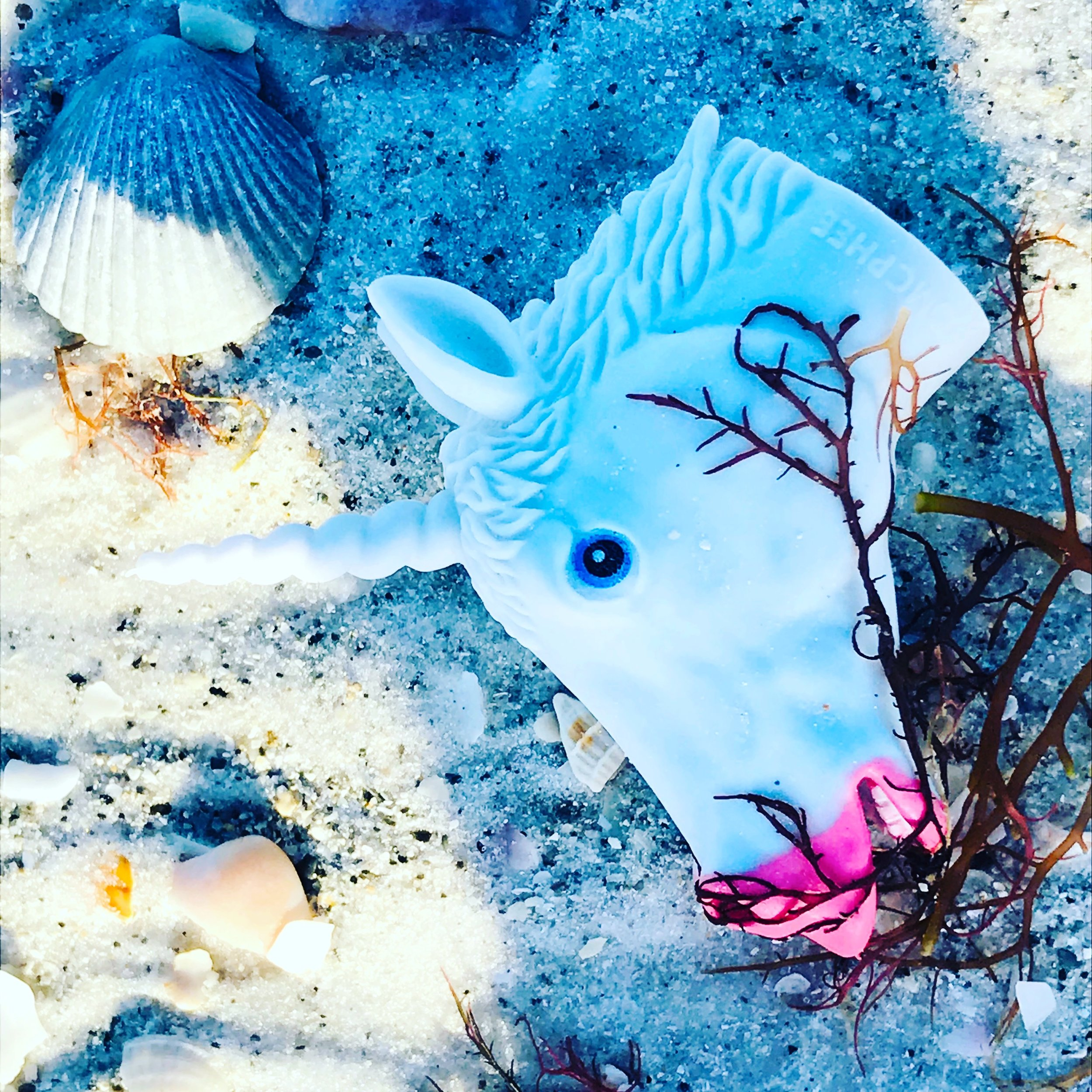 Unicorn in the sand
