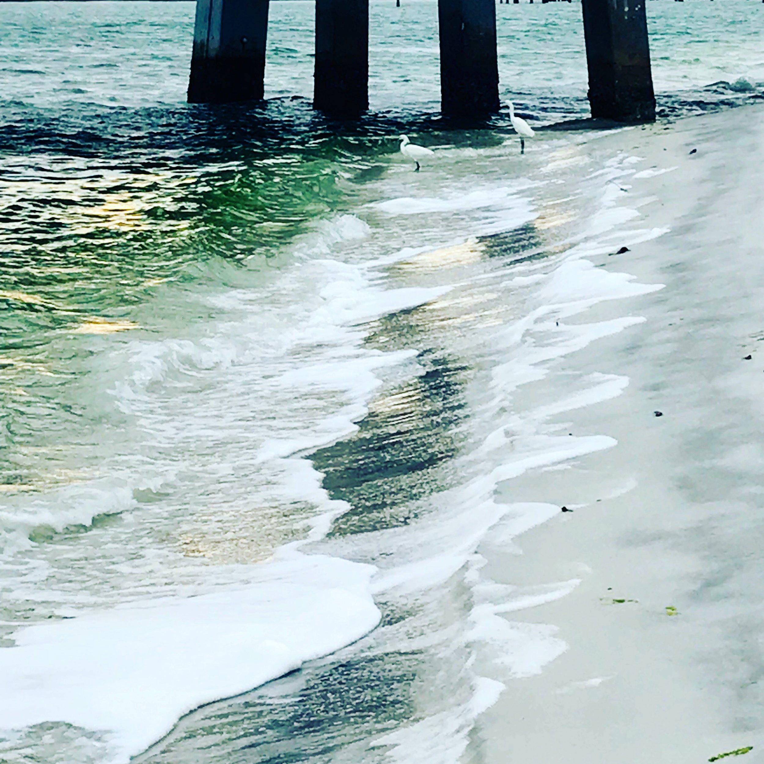 surf and pilings.JPG